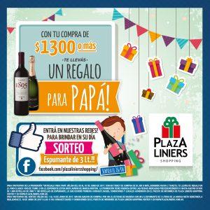 Viví el Día del Padre en Plaza Liniers Shopping